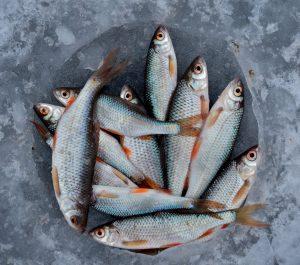 Spălare uniforme de lucru pescării